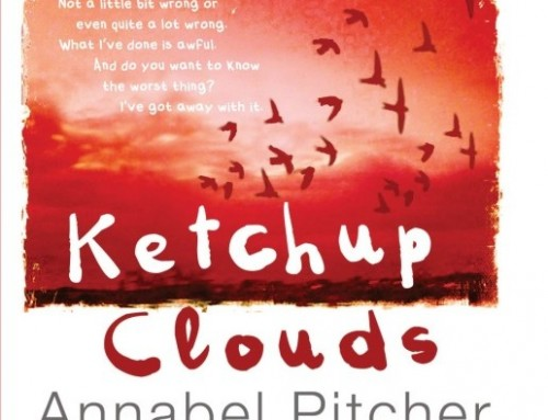 Ketchup clouds / Annabel Pitcher