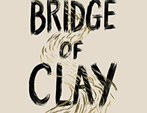 Bridge of Clay / Markus Zusak