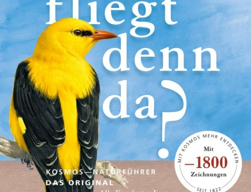 Was fliegt denn da? / Peter H. Barthel, Paschalis Dougalis